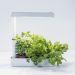 Herby LED Plantearmatur 12W/840