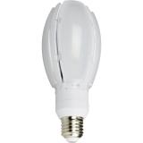 NASC LED Oval Gårdslampe 24W E27 830